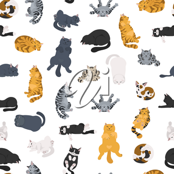Sleeping cats poses seamless pattern. Flat different color simple style design. Vector illustration