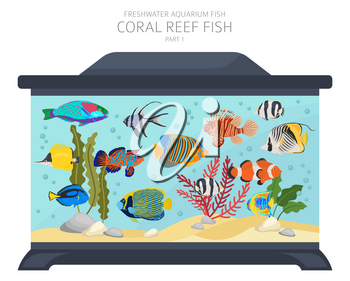 Coral reef fish. Freshwater aquarium fish icon set flat style isolated on white.  Vector illustration