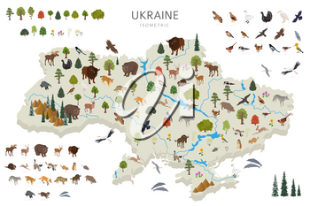 Isometric 3d design of Ukraina wildlife. Animals, birds and plants constructor elements isolated on white set. Build your own geography infographics collection. Vector illustration