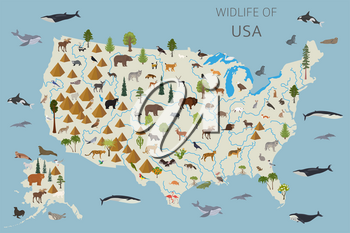 Flat design of USA wildlife. Animals, birds and plants constructor elements isolated on white set. Build your own geography infographics collection. Vector illustration