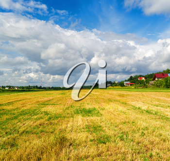 Landscape with field of cut grass and blue sky with cumulus clouds. Sunny day in countryside.