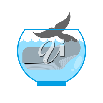 Whale in  Aquarium. Large sea animal is not put into Aquarium. Tail is sticking out of  water. Mini marine mammals.