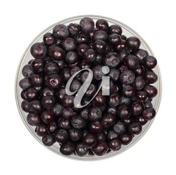 Blueberry fruits in glass bowl isolated on white background