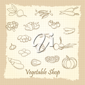 Hand drawn vegetables on vintage notebook page. Vegetable shop vector