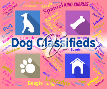 Dog Classifieds Representing Pups And Canines Media