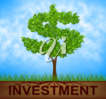 Investment Tree Showing Growth Stock And Opportunity