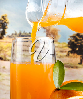 Orange Juice Healthy Showing Citrus Fruit And Refreshment