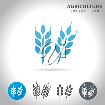 Agriculture icon set, collection of wheat icons, vector illustration