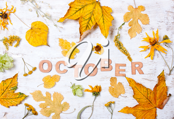 The word October with yellow leaves on a white wooden background. Autumn composition