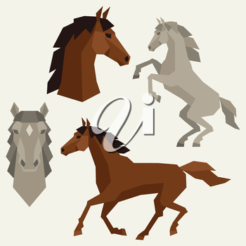Set of horses different poses in flat style.