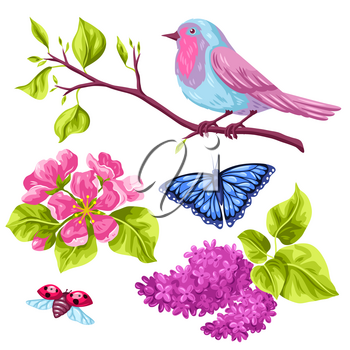 Spring garden set of objects. Natural illustration with blossom flower, robin birdie and butterfly.