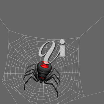 Background with black widow spider. Banner for Halloween holiday.