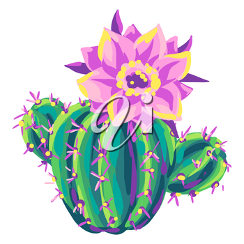 Illustration of cactus. Decorative spiky mexican cacti. Natural image.