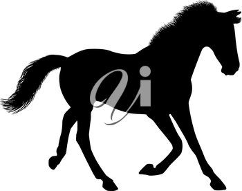 Silhouette of a running horse. There is a variant in a vector.