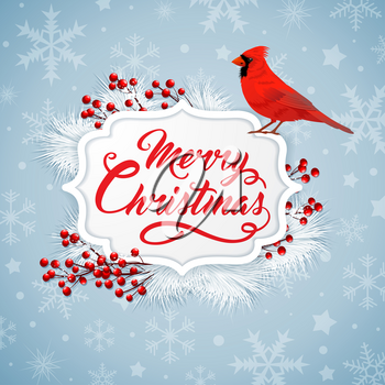 Christmas background with red berries, white fir branch and cardinal bird. Merry Christmas lettering. Design for greeting Christmas card.