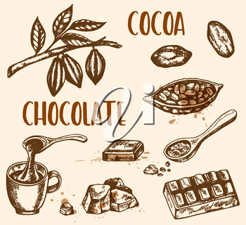 Set of vector hand drawn chocolate and cocoa beans. Vintage style illustration
