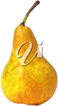 Royalty Free Photo of a Bartlett Pear