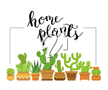 Vector home plants framed illustration with home cacti in pots. Nature green plant in pot, indoor flowerpot succulent cactus