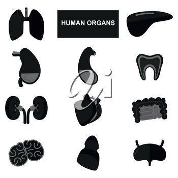 Silhouettes of human organs on white background. Set of anatomical icons. Vector illustration
