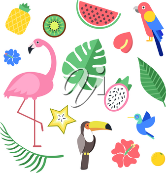 Flowers and tropical exotic fruits and birds. Vector illustrations isolate. Summer tropical flower hawaii, bird flamingo and pineapple