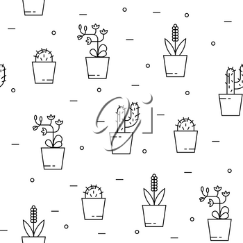 House plants seamless pattern with cactus and orchid. Can be used for background, website, poster etc.