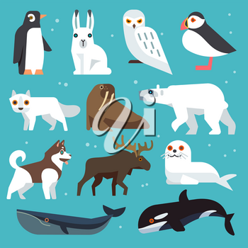 Polar animals icons. Polar birds and arctic northern animals vector set in flat style