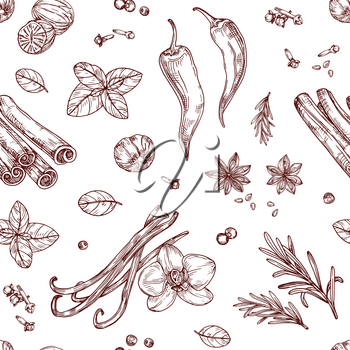 Sketch spices seamless pattern. Cooking herbs and asian vegetables. Hand drawn vector texture. Aroma condiment, herbal spicy for cooking illustration