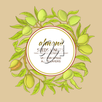 almond branches vector frame on color background