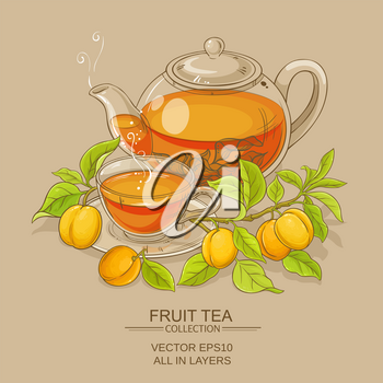 apricot tea vector illustration on color background