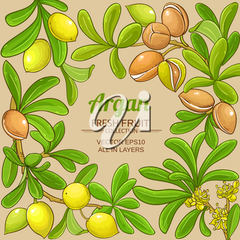 argan branches vector frame on color background