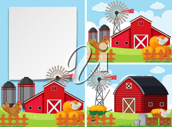 Three scenes with barns and chickens illustration