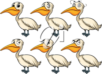 Pelican bird with different emotions illustration