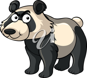 Wild panda with angry face illustration