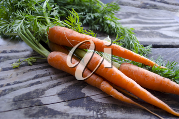 Ripe and fresh organic carrots on old wooden table. Harvesting bunch of young carrots on a wooden background. Agriculture, gardening, harvest, healthy lifestyle concept. Orange clean deliceous carrots