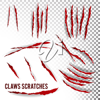 Claws Scratches Vector. Transparent Background Realistic Illustration