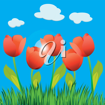 Illustration of tulip field and blue sky.