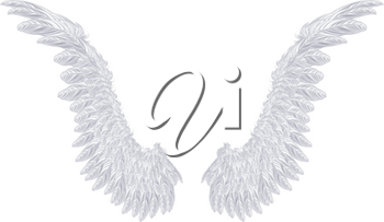 Pair of detailed light gray angel wings on white background.