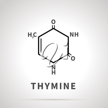 Chemical structure of Thymine, one of the four main nucleobases, simple icon