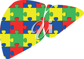 Liver with puzzle red blue green yellow icon black color vector illustration isolated