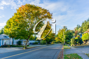 A view of a street in Burien, Washington in the autumn.