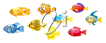 Funny fish vector characters. Colorful coral reef tropical fish set vector illustration. Sea fish collection isolated on white background.