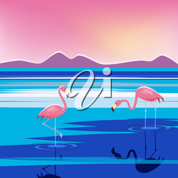 Vector illustration of three pink flamingos in the lake at sunset