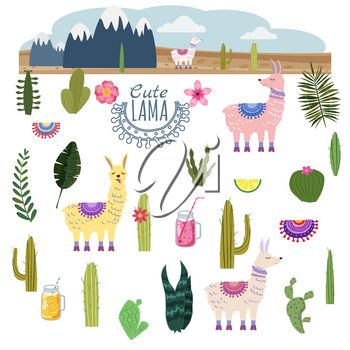 Set Lama Alpaca cacti drinks and decorative. Collection funny elements for decoration