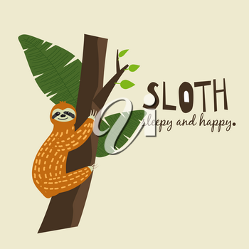 Cute funny sloth hanging on the tree. Sleepy and happy. Adorable hand drawn cartoon animal illustration