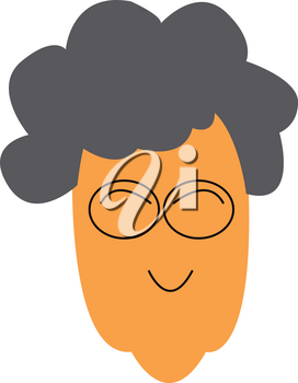 Face of an old woman with grey hair is wearing eye glasses vector color drawing or illustration